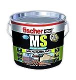Fischer 534619 Impermeabilizante polímero MS Gris, 1 Kg