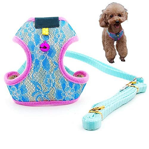 LucaSng Girl Dog Harnesses for Small Dogs, Small Dog Harness and Leash Set, Adjustable Dog Vest Harness with Bell,Breathable Mesh Lining Dog Harnesses for Easy Walk, Training(Sock,M Lace Blue H)