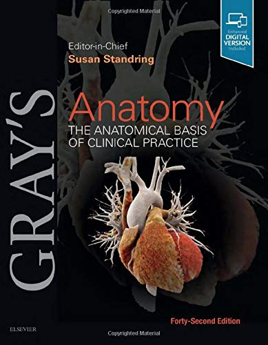 Compare Textbook Prices for Gray's Anatomy: The Anatomical Basis of Clinical Practice 42 Edition ISBN 9780702077050 by Standring PhD  DSc, Susan