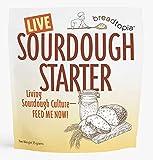 Breadtopia Sourdough Starter (Live) | Made from Organic & Non-GMO Ingredients | Easy to Follow Instructions | Make Homemade Sourdough Bread | Sour Dough Starter Live |