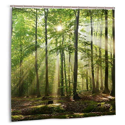 Blived Duschvorhang,Früher Morgen unter schönem Wald in Polen,Wasserdicht Bad Vorhang mit Haken 150cmx180cm