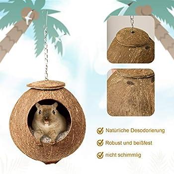 Nid d'oiseau naturel en noix de coco - Hamac suspendu - Nid d'oiseau - Avec coussin doux et 1 balançoire pour perroquets, perruches, pinsons, hamsters (L)