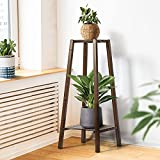2-Tier Tall Plant Stand for Indoor Plants, 30-Inch Bamboo Plant Stand for Flower Pot Display, Triple Process-Surface Smooth, Waterproof, Multi-Tiered Wooden Corner Plant Stand for Indoor Outdoor