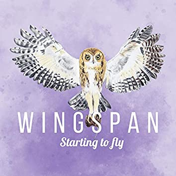 Starting to Fly (Wingspan Original Video Game Soundtrack)