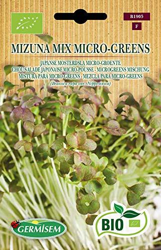 Germisem Microgreens Mischung MIZUNA MIX MICRO-GREENS
