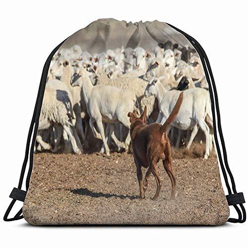 Australian Kelpie Dog Working Dorpa Sheep Animals Wildlife Action Nature Rugzak met trekkoord sporttas voor dames heren kinderen groot formaat met ritssluiting en waterfles netzakken 14 x 17 inch