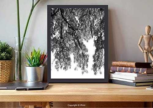 №16120 Wooden Framed Wall Art,Apartment Decor,Photograph of Trees from The Ground with Branches and Leaves Art Image,Black and White, Best for Gifts