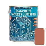Peinture, résine d'étanchéité toiture, réparation tuiles, fissures, anti-fuites, décore, protège, plusieurs coloris PROCOM 2.5 litres Terre cuite