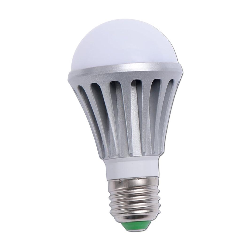 宿泊迷彩剥離LED 電球 E26 口金 船 ボート 用 作業灯 室内 室外灯 無極性 防水 ノイズレス デッキライト エンジンルームに (24v 12v 兼用)