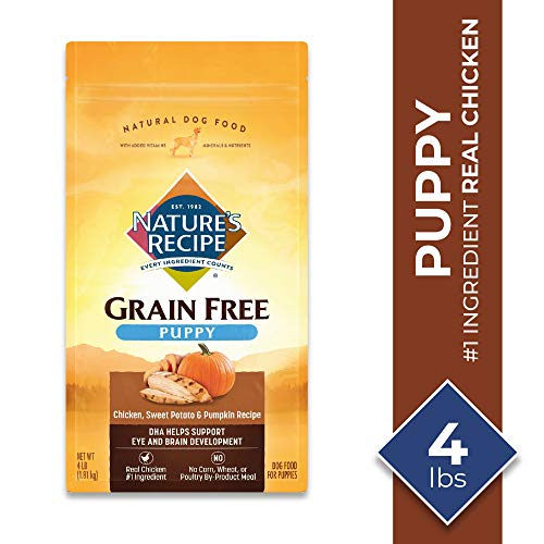 Nature's Recipe Grain-Free Dry Dog Food Chicken, Sweet Potato & Pumpkin Recipe