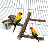 Tfwadmx Bird Feeding Dish Cups, Stainless SteelBird Cage Bowl Wood Stand Branch Perch with Parrot Food Water Bowl for Small Medium Budgies Parakeet Cockatiel African Grey Conure Lovebird