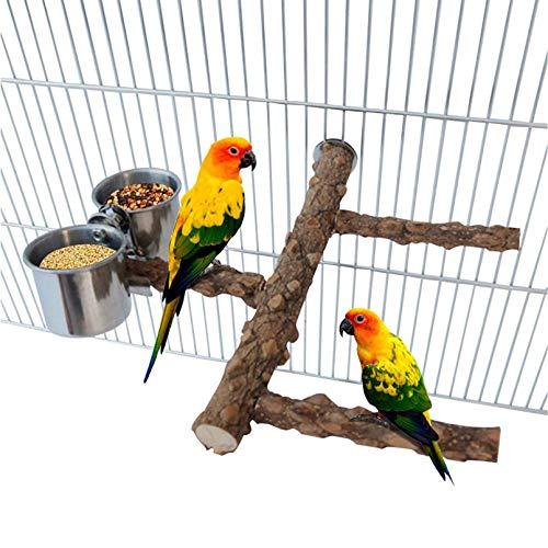 Birds Water Bowl for Indoor Birdss
