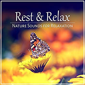 Rest & Relax: Nature Sounds for Relaxation, Pure Massage, Music for Healing Meditation, Reiki, Yoga & Deep Sleep