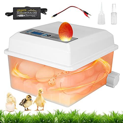 GJCrafts Incubatrice per uova automatica per 16 uova con giratore automatico e controllo della temperatura, incubatrici per pollame per uova da cova di tacchino anatra oca quaglia pollo