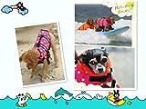 Hund Schwimmweste LIFE JACKET Schwimmen Vest Kleidung Oxford Ripstop Quick Release - 4