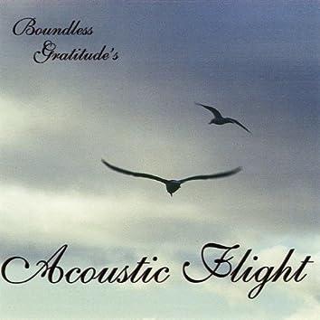 Acoustic Flight