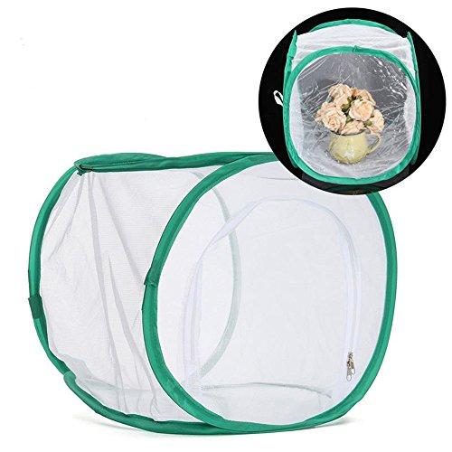 Terrarium pop-up pour cage à insectes et papillons (30,5 x 30,5 x 30,5 cm) (Noir)