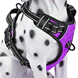PoyPet No Pull Dog Harness with Front Clip, Comfortable Reflective Pet Vest Harness with Handle for Puppy Small Dog (Purple, XS)