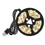 NaisiCore LED de Luces de Tiras de Cinta de la Cinta del USB LED de luz Blanca a Prueba de Agua de luz cálida 5V 2M para la decoración del hogar del Partido