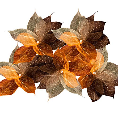 Guirnalda de luces Blaze On Hoja Natural., Rustic Tones, 10 Lamps - 5 Metre Long