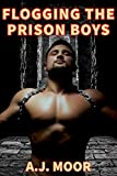 Flogging the Prison Boys (Flogged in Prison Camp Series Book 1)