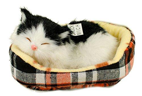 Teddys Rothenburg Katze im Körbchen, 14 cm, schwarz/weiß, mit Stimme, Plüschtier, Plüschkatze