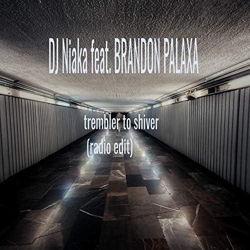 djniaka feat. Brandon Palaxa