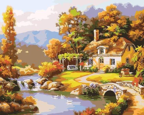 WONZOM DIY Pintura al óleo, Pintar por Numeros Kit, Cabaña Rural Dibujo con 3 Pinceles 16 * 20 Pulgadas Decoraciones para el Hogar (Marco)