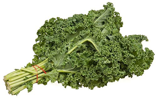 Semillas de Kale 100 Semillas de Brassica Oleracea o Col Silvestre
