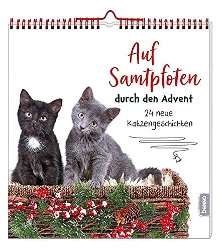 Auf Samtpfoten durch den Advent: 24 neue Katzengeschichten