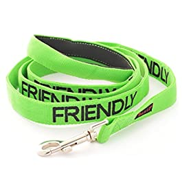 FRIENDLY (Known as Friendly to all) Green Colour Coded 60cm 1.2m 1.8m Neoprene Padded Handle Dog Leads PREVENTS Accidents By Warning Others Of Your Dog In Advance
