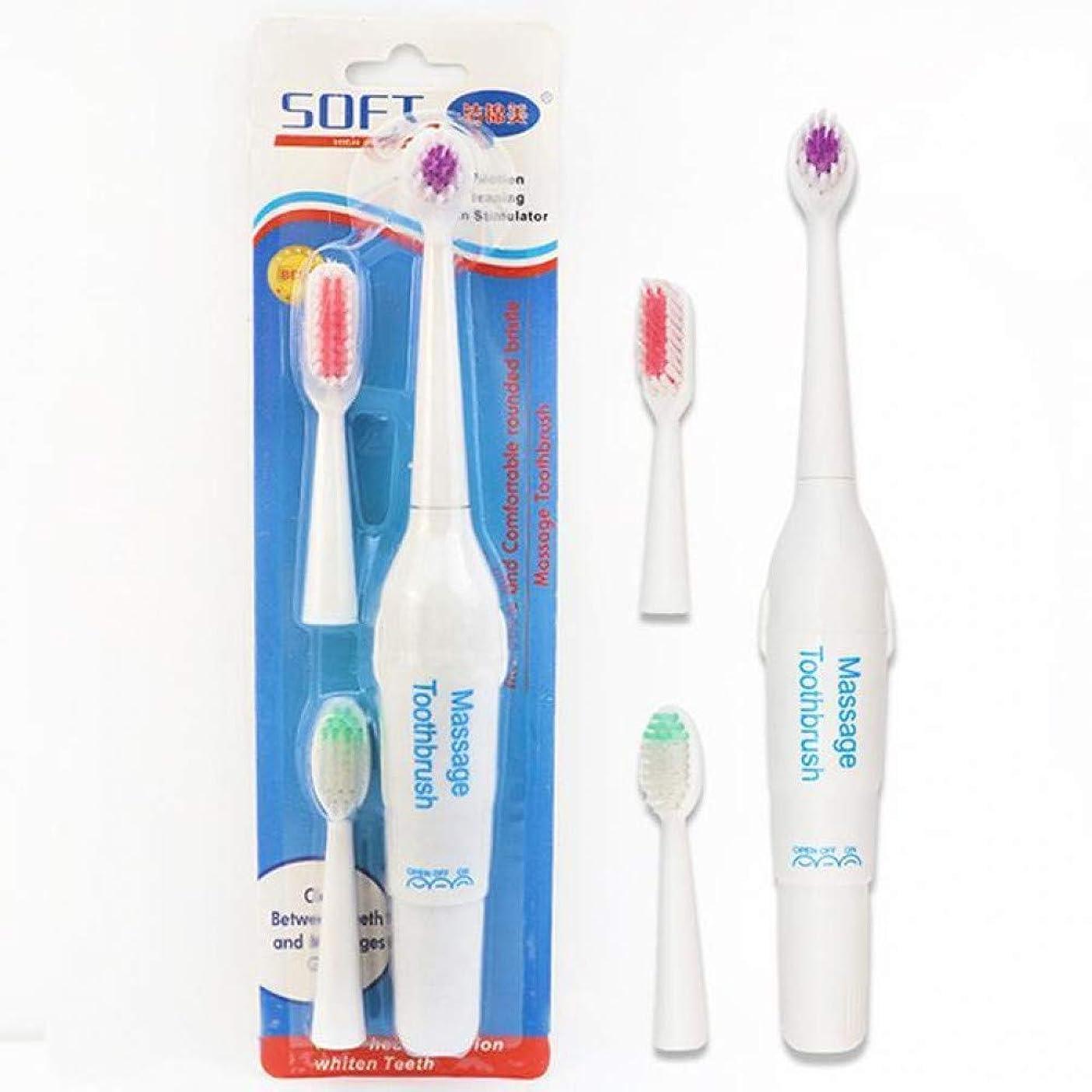 3個のブラシヘッドの電池式の電動歯ブラシの口頭衛生の健康の1Pcs電動歯ブラシ、