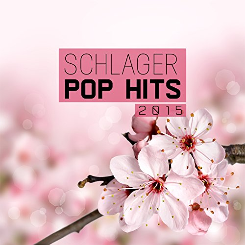 Schlager Pop Hits 2015