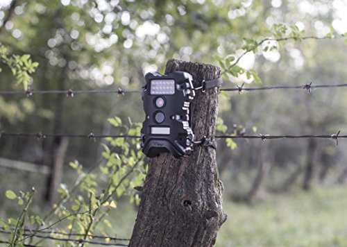 Wildgame Innovations Terra 8 Megapixel IR Infrared Hunting Trail Camera