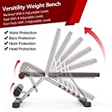 Delfy Adjustable Weight Bench Foldable, Fitness Workout Bench Weight Lifting Sit-up Multi-use Exercise Bench Flat Incline Decline Bench Press for Home Gym Training