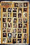 Maxi Poster 91,5 x 61 cm, Harry Potter Figur Montage Past
