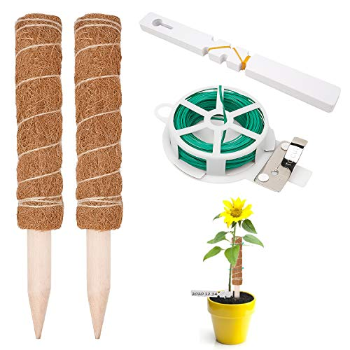 LOVEXIU Totem Plantas(30 * 4cm),Palo de Fibra de Coco 2 Pcs,Tótem de Musgo,Plantas Trepadoras Palo,Extensión de Soporte Etiquetas de Plantas para Enredaderas Escalada de Plantas Interiores Jardín