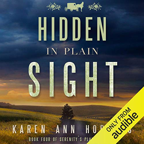 Hidden in Plain Sight  By  cover art
