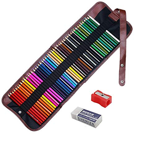 22 Assorted Coloured Pencils Strong Leads Pencil Crayons in Wallet VGK//6