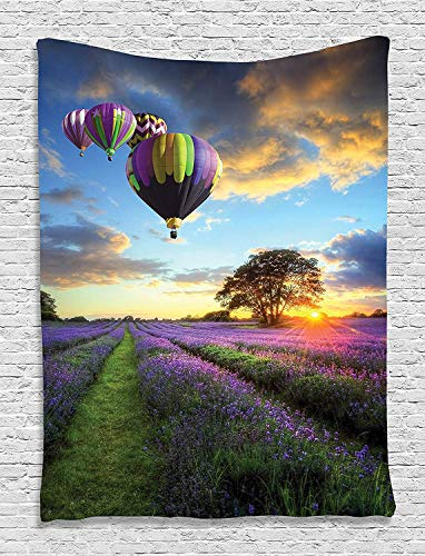 Ambesonne Hot Air Balloon Tapestry, Spring Lavender Field at Sunrise Various Air Vehicle on Sky Print, Wall Hanging for Bedroom Living Room Dorm Decor, 40' X 60', Green Purple