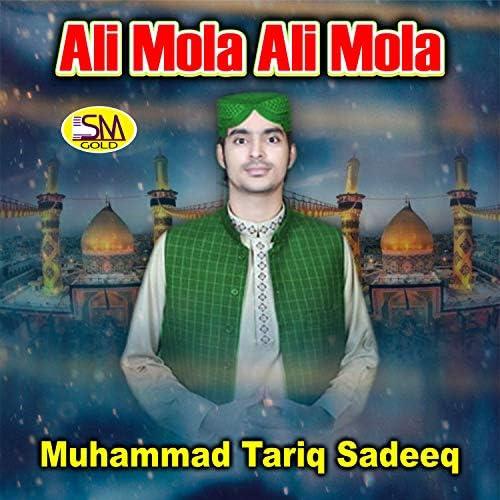 Muhammad Tariq Sadeeq
