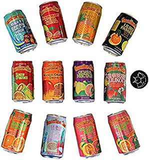 Hawaiian Sun Juice Drinks Ultimate Variety Pack - Try Them All - Unique Fridge Magnet Included