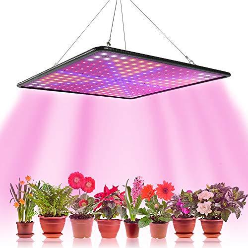 1000 W LED-Lampe für Gartenwachstum, Blüte, Grow Light für Anzucht im Innenbereich, Pflanzen, Pflanzenlampe, Hydrokultur, Beleuchtung, Keimung mit Haken (C)