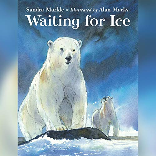 Waiting for Ice cover art