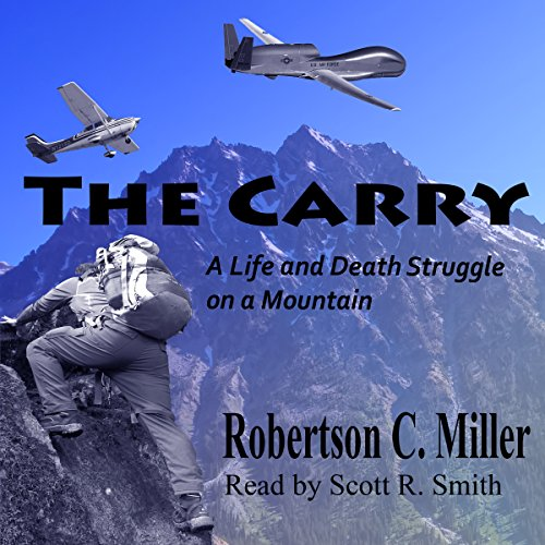 The Carry audiobook cover art