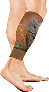 GIRLOS Owl in The Beautiful Forest Compression Calf Sleeves Leg Compression Socks Mproves Circulation Recovery Leg Sleeve for Women Men Nurse Basketball Players Playing Basketball Gym - 1 Pair