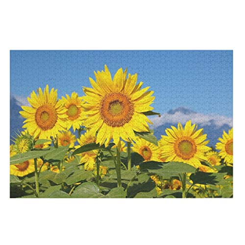 500 Pieces 3D Sunrise Sunflower DIY Jigsaw Puzzles,Intellectual Game Toys Puzzles -View for Kids Adults Entertainment white 200 pieces