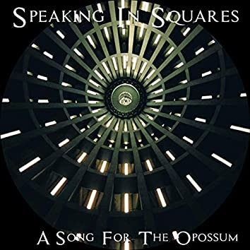 A Song for the Opossum