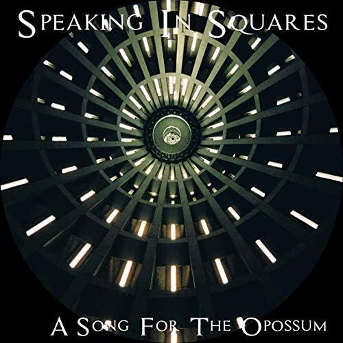 Speaking In Squares