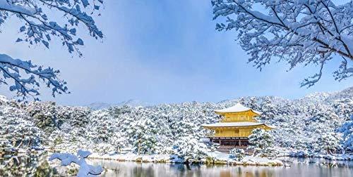 Escena De Nieve De La Ciudad Japonesa Rompecabezas De 1000 Piezas Rompecabezas Desafiante Caja De Rompecabezas Avanzada Regalo De Cumpleaños para Padre Y Madre
